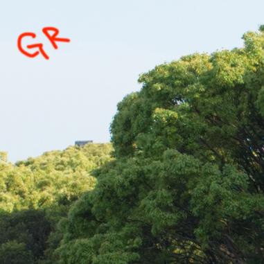 _R171270_gr_a.jpg
